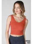 NIKIBIKI Vintage V-Neck Crop Top